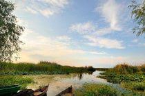 dunajska delta 2
